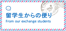 留学生からの便り